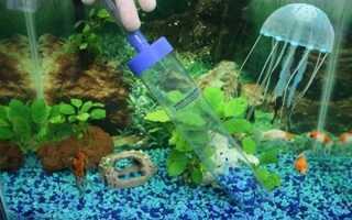 Правила и лучшие способы, как почистить фильтр в аквариуме
