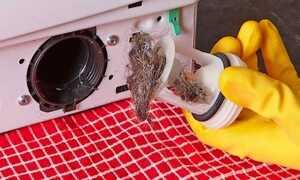Как быстро почистить фильтр в стиральной машине LG